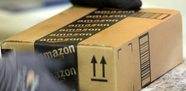 "It's a Jungle Out There:  A practical overview of so-called ""Amazon"" laws."